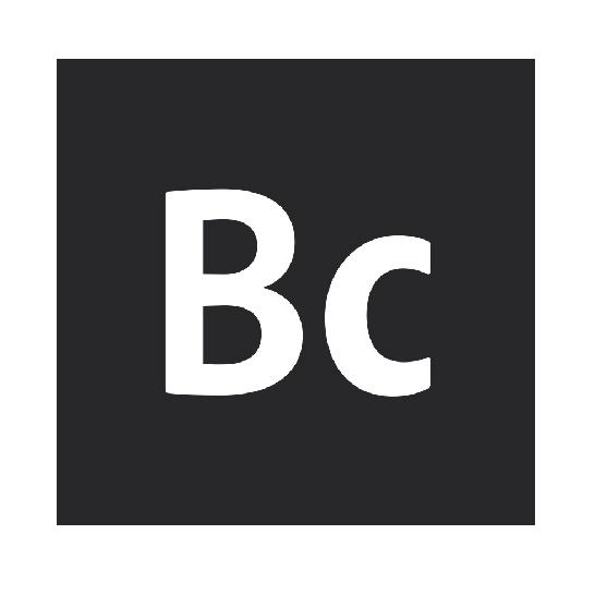 bc-icon-100