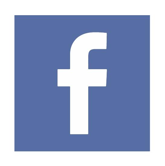 fb-icon-100